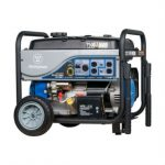 whole house natural gas generator