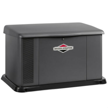 Briggs and Stratton 40346